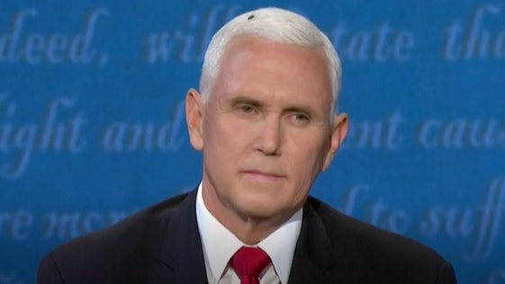 image of mike pence with a fly on his head
