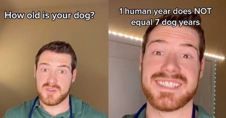 dog years aren't real