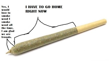 sections of a joint, sections of a joint meme, funny sections of a joint meme