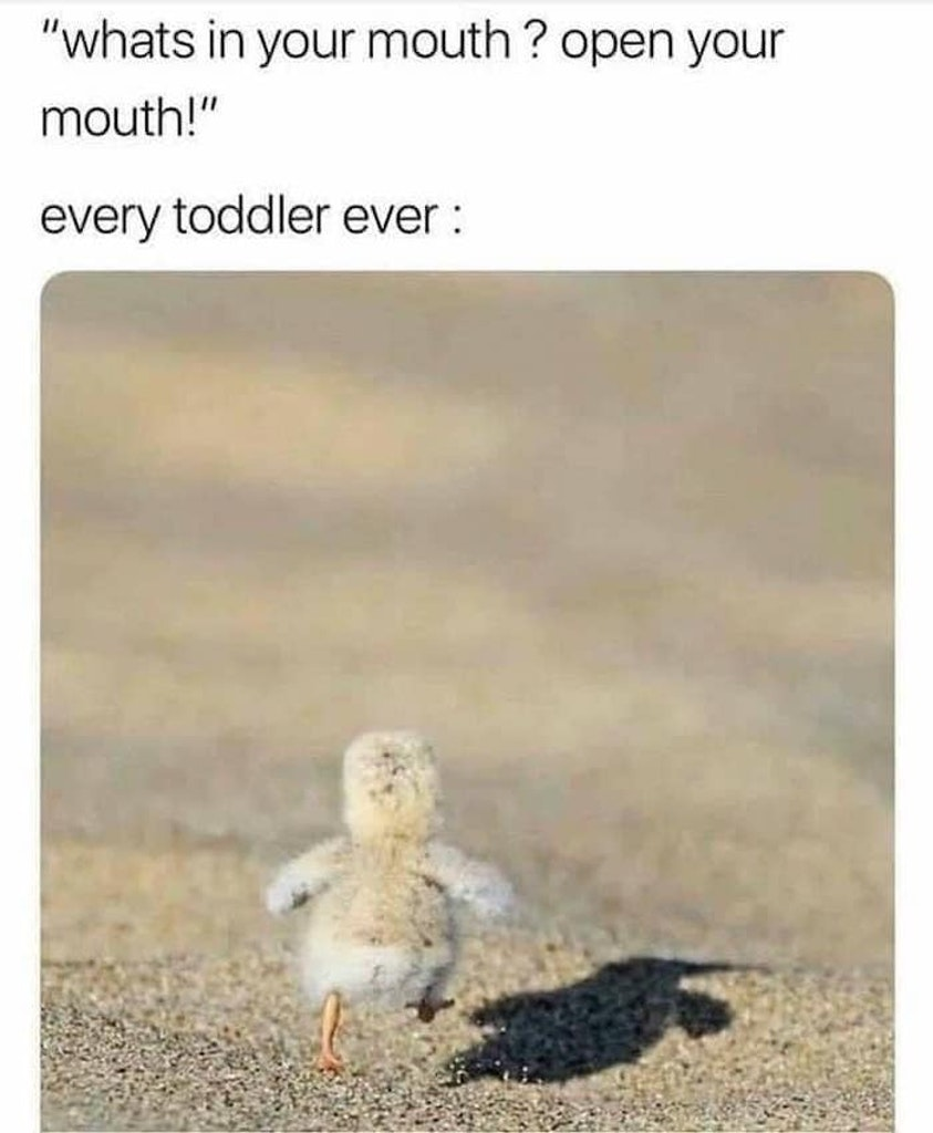 toddler meme, toddler memes